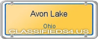 Avon Lake board